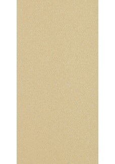 Paradyż SAND brown 29,8x59,8