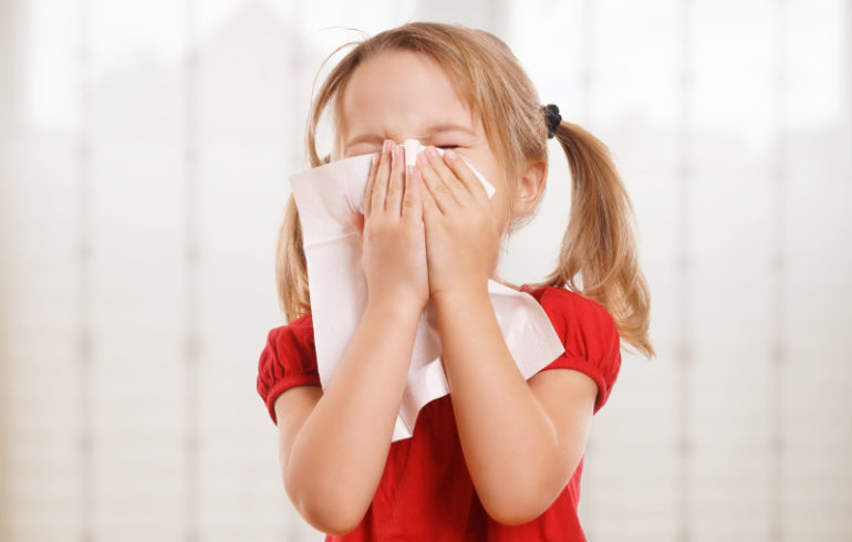 podłoga w mieszkaniu alergika