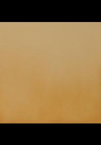 Cerrad Gobi podłogowa 300x300x11mm 820221143