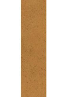 Paradyż AQUARIUS Brown elewacja 6,58x24,5