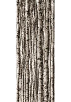 Tubądzin EPOXY Birch dekor szklany 4-elementowy 239,8x89,8