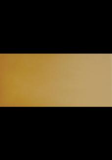 Cerrad Gobi podłogowa 300x148x11mm 920121167