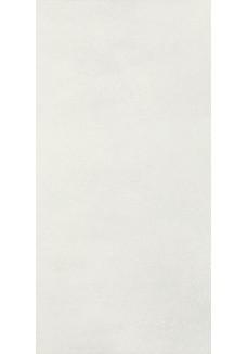Paradyż TAIGA Silver 29,5x59,5