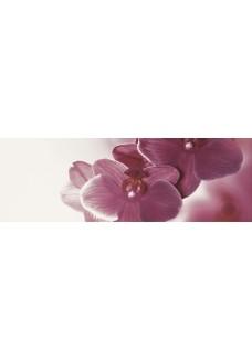 Paradyż Abrila inserto Kwiat B (błyszczący) 20x60 G1